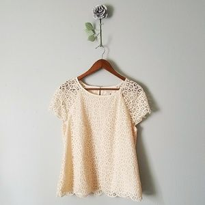 🍃 J. Crew | Lace Overlay Short Sleeve Blouse